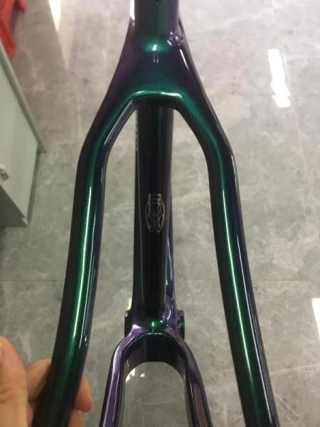Cadre Carbone 29 Sl Model 2020 Green